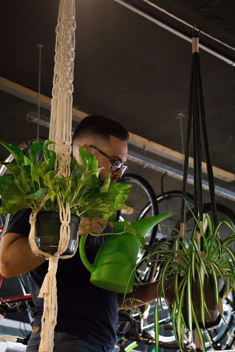 TJ tending to one of the multiple spider plants in the new space.