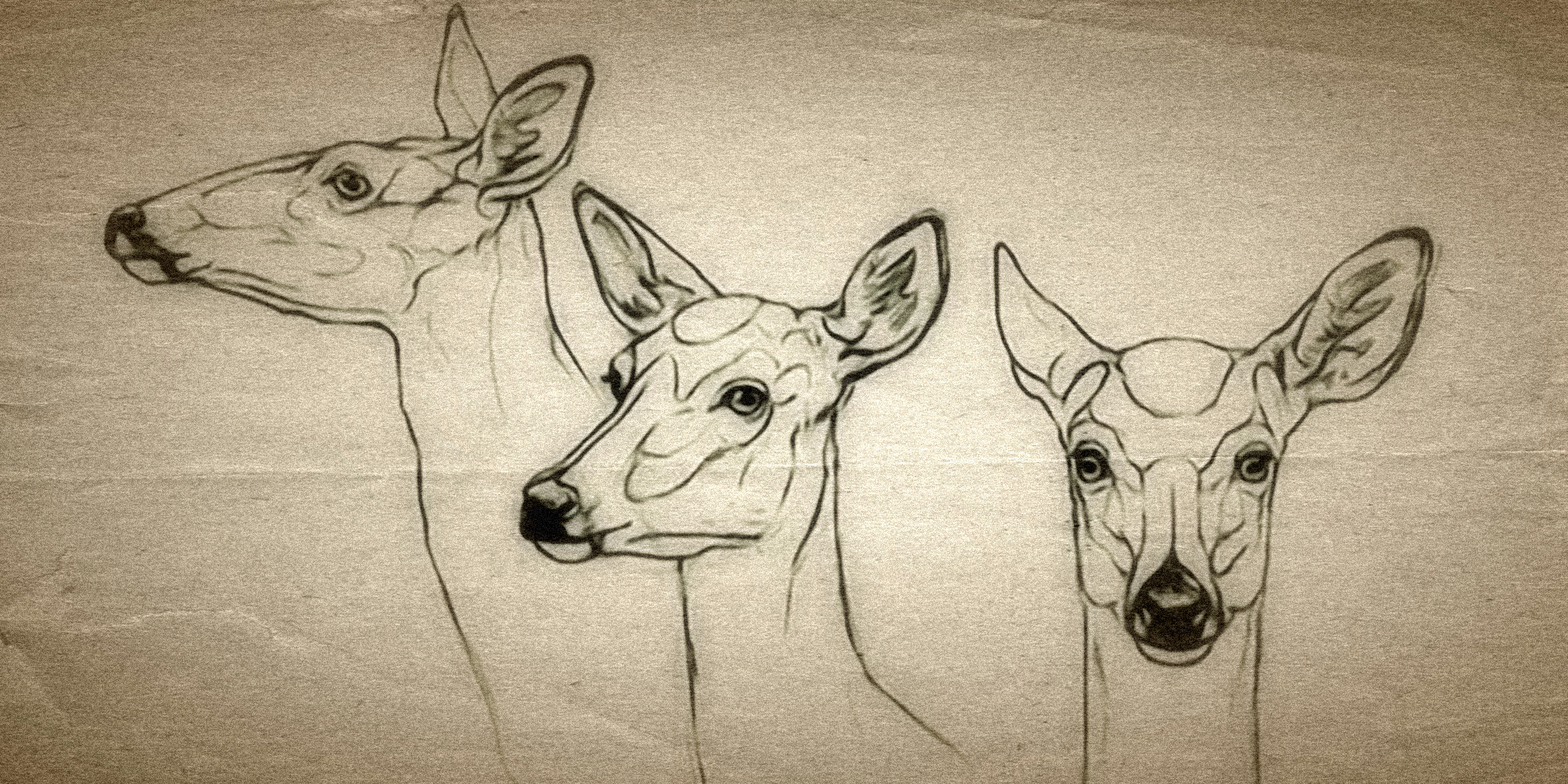 CLUTTERBUCK - Created by Jana Ross