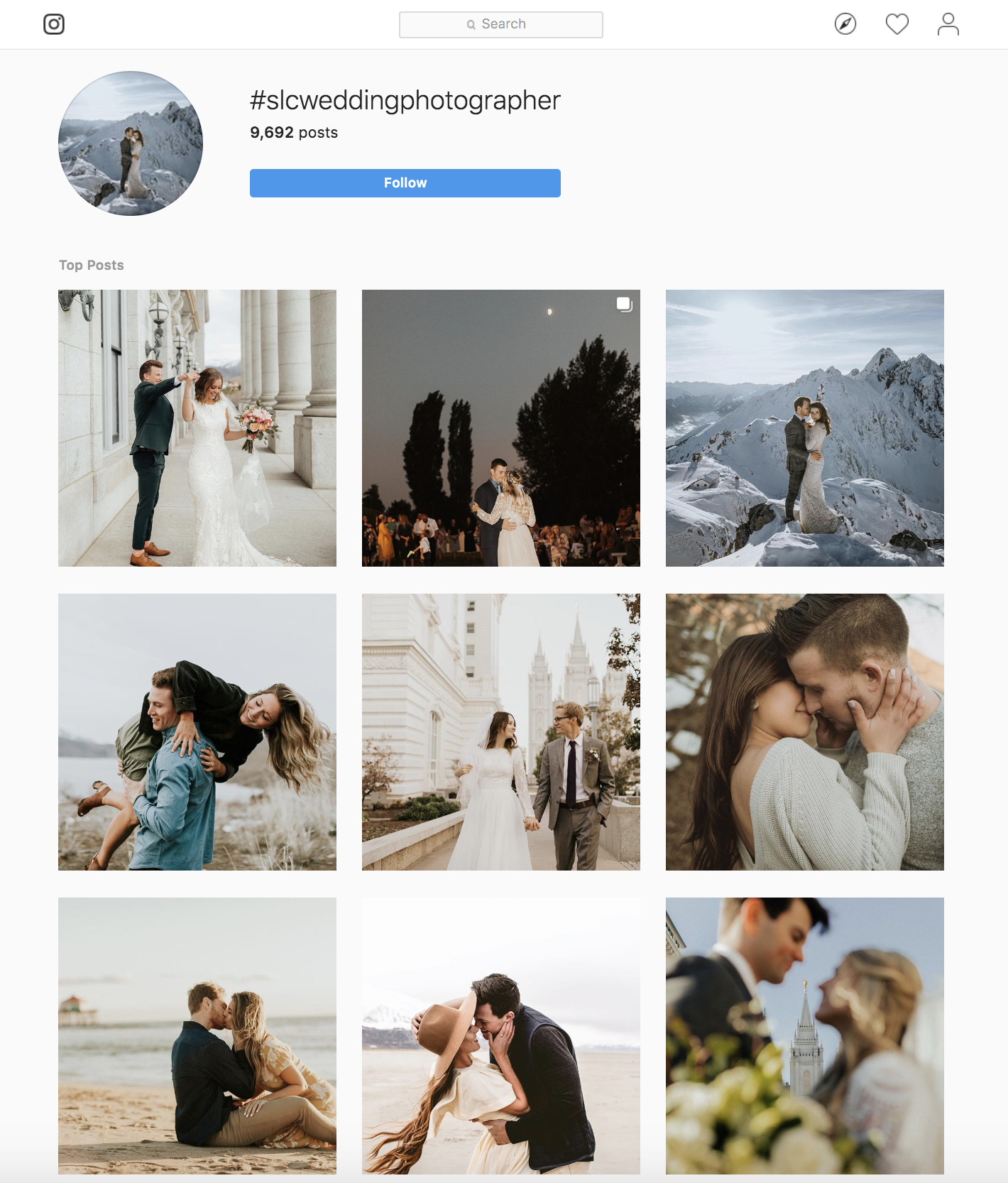 Images do not belong to AB Hansen Photography