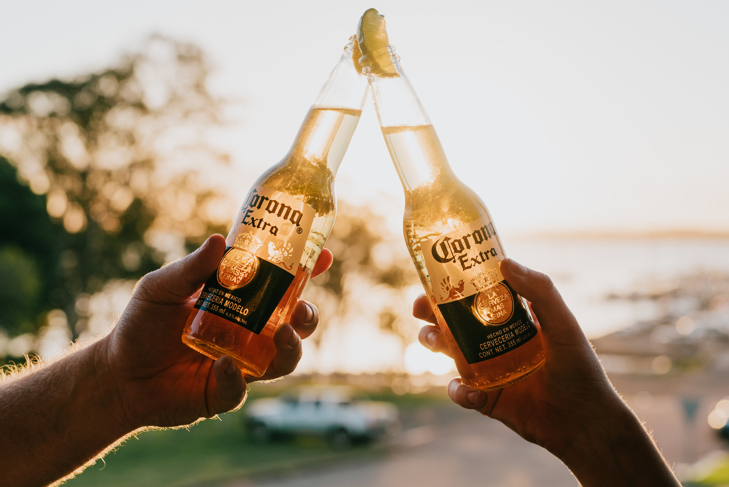 gunyah_hotel_beer_corona.jpg
