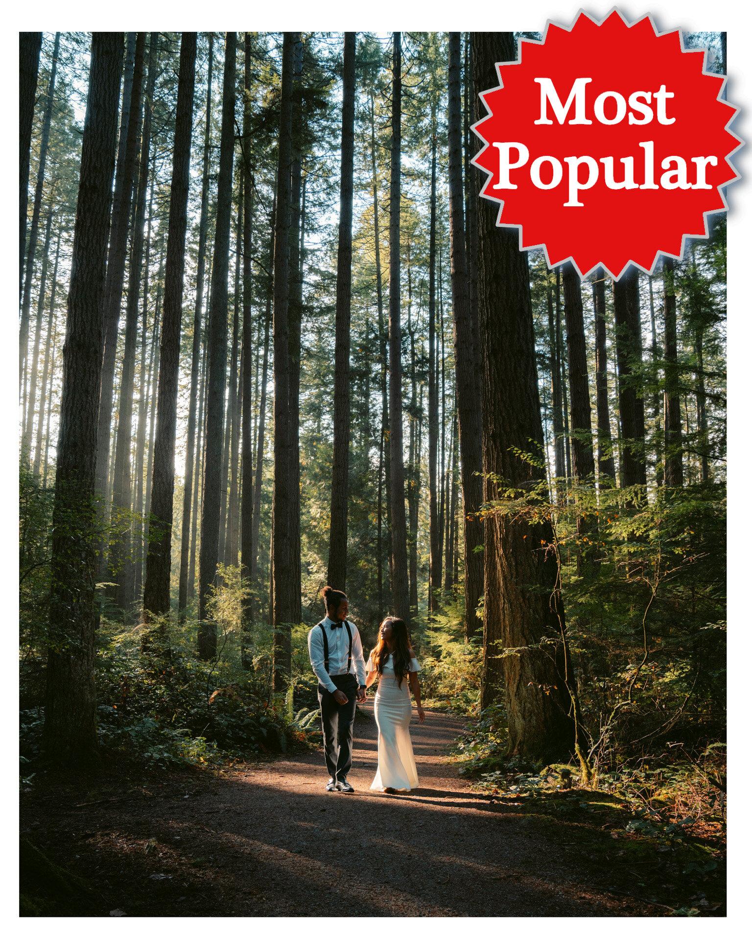 most popular elopement.jpg