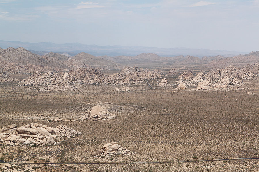 View from Ryan Mountain Hike Trail.