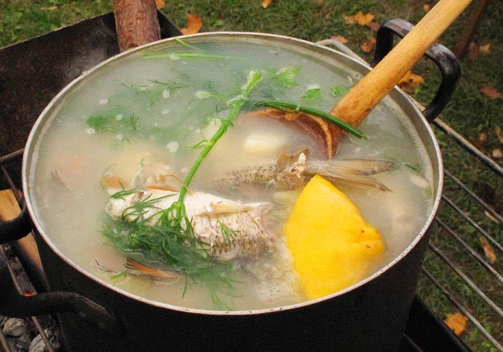 Mamatoto_Natural_Fertility_Naturopath_Women's_Health_Natural_Fertility_Specialist_Fertility_Foods_Fish_Meat_Stock_Recipe.jpg