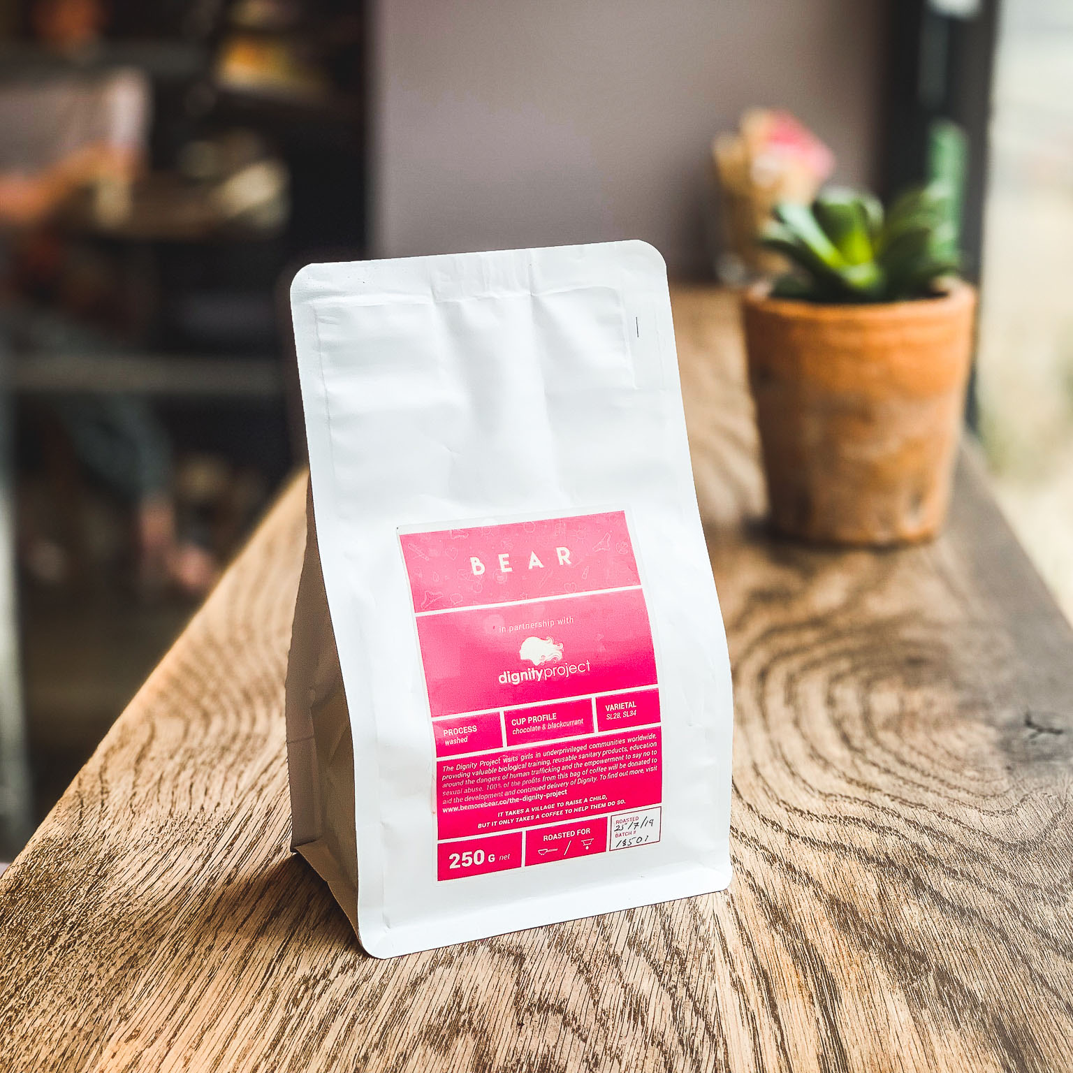 BEAR x The Dignity Project Coffee