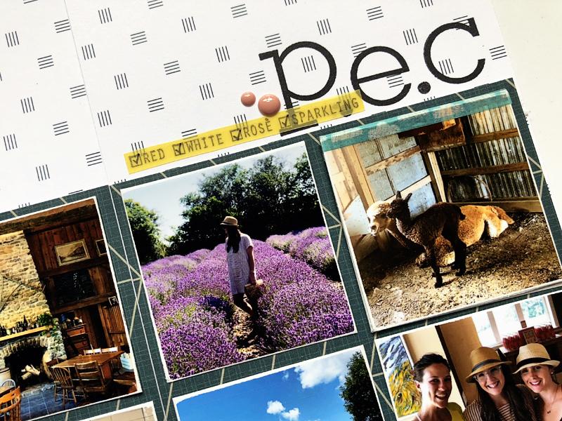 klw_pec_closeup2.jpg