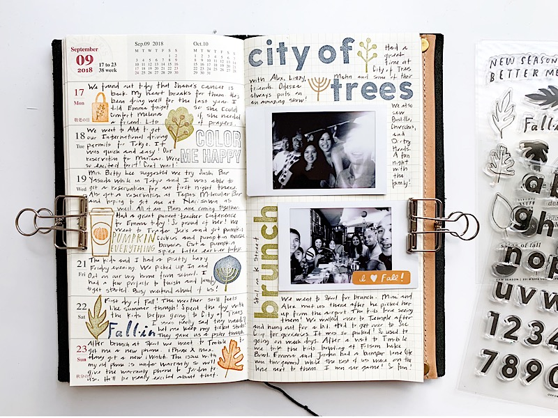 City of trees-1.jpg