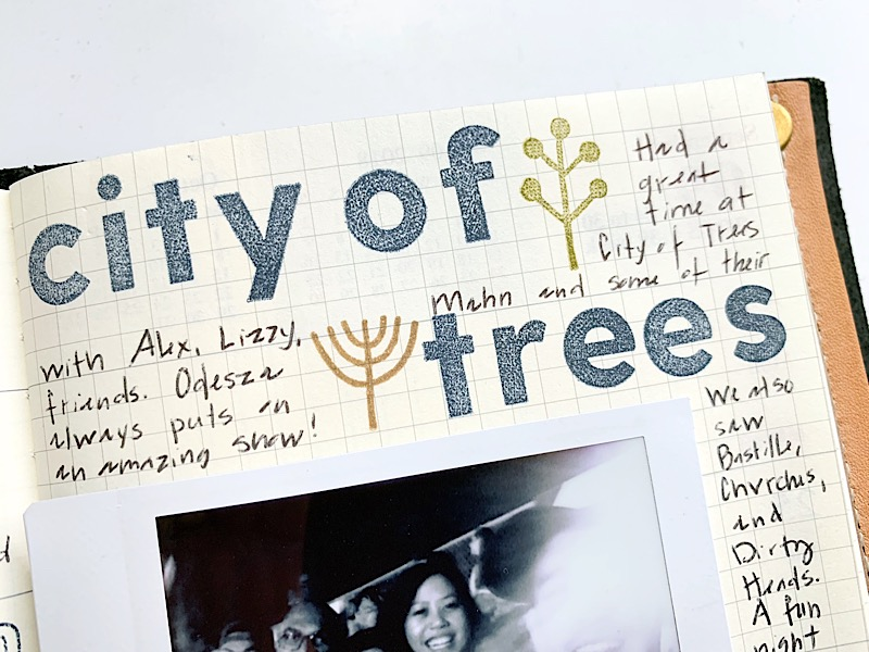 City of trees-2.jpg