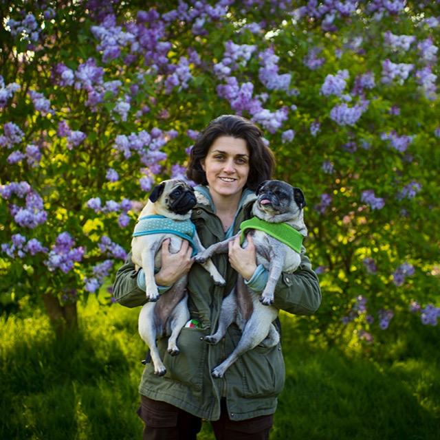 Dog Photographer - Rhian White Photography - Dog Photographer Devon - Dog Photographer Sussex - Dog Photographer UK
