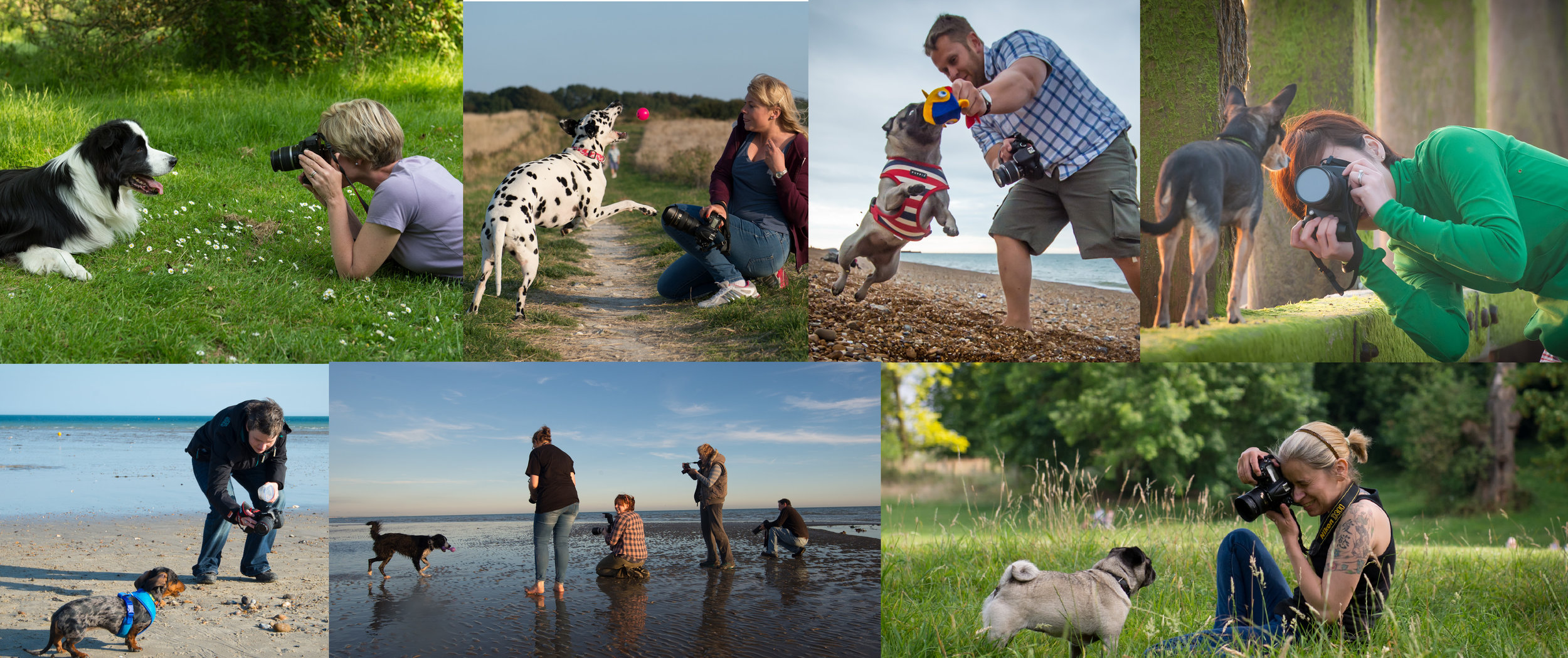 Workshops are fun and informal, for you and your dog. You can choose to do a 1-1 with me or share the day with up to 3 friends.