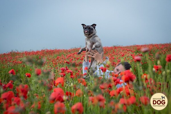 Boo-and-Poppies-2.jpg