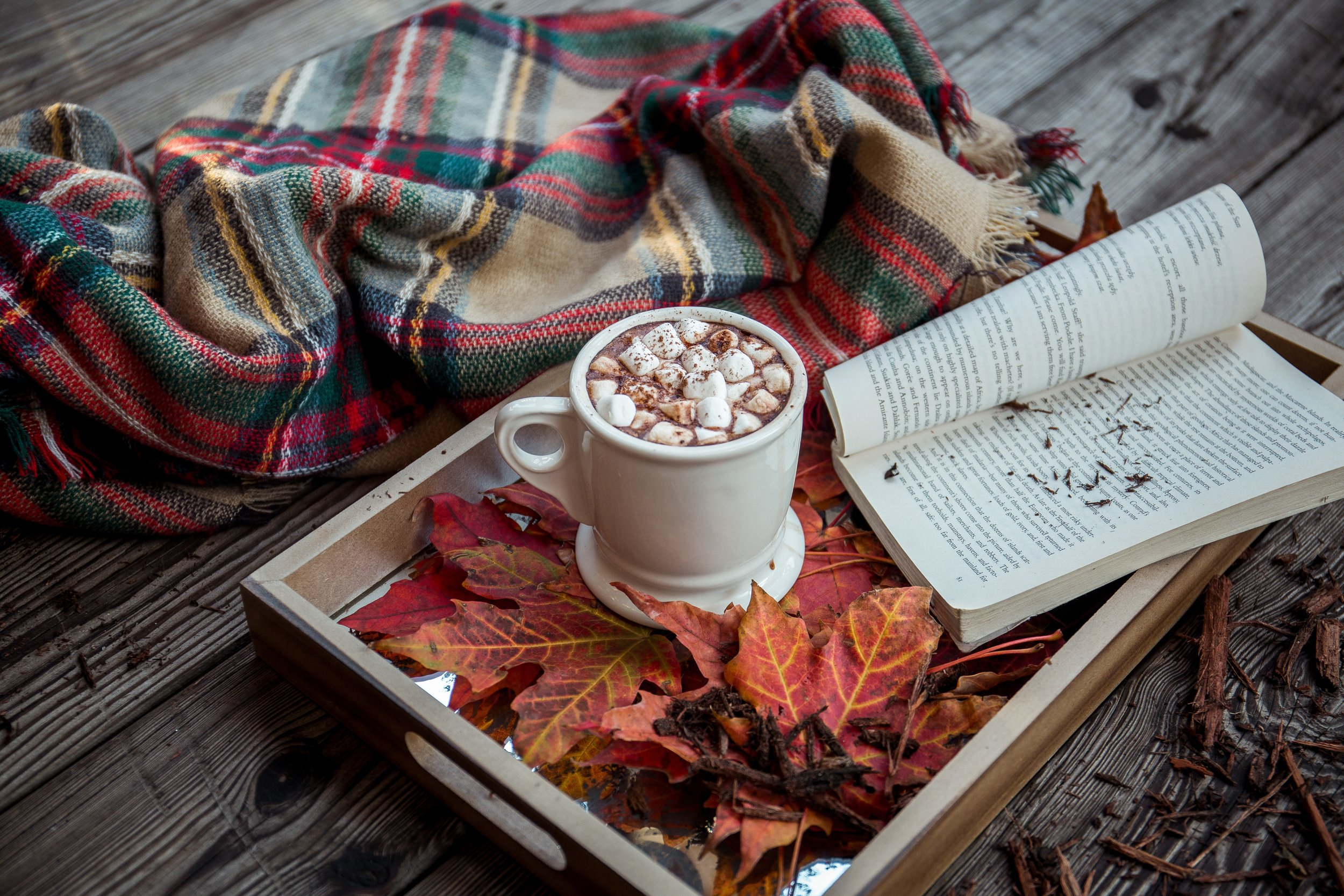 A hot chocolate outside with a blanket and book