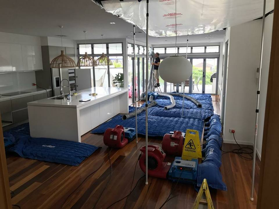 Steammatic-Brisbane.jpg