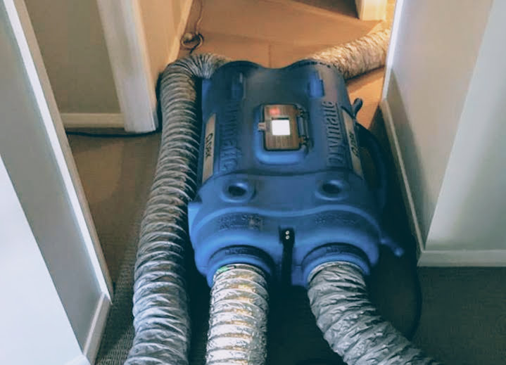 Job of the month, Drymatic Australia Structural Heat drying.jpg