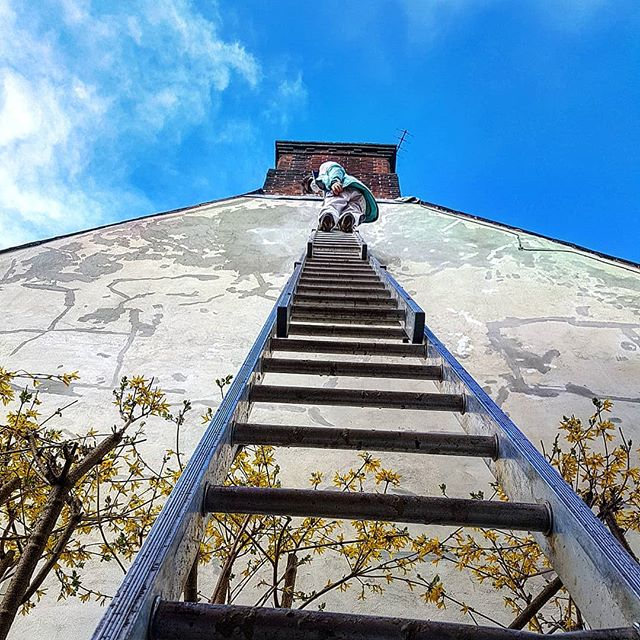 #laddertothesky #exteriorpainting #womenintrades #paintinganddecorating #painting #franandlou #bluesky #franandlou