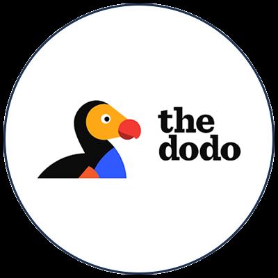 impact-mediatique-guirec-soudee-the-dodo.png
