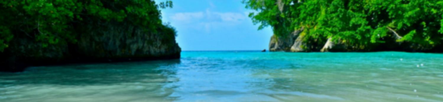 Beach - Trelawny 1.png