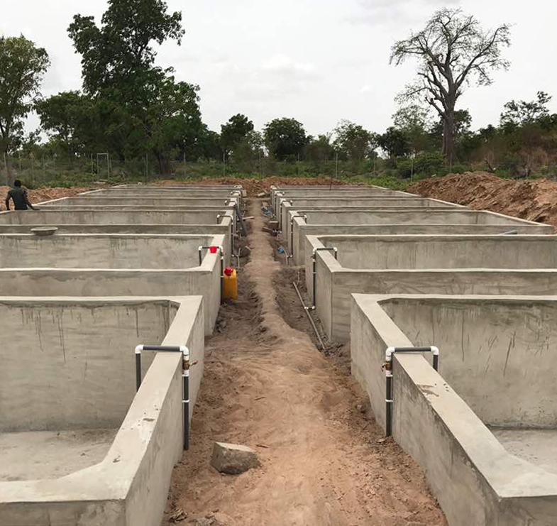 concrete fish tanks