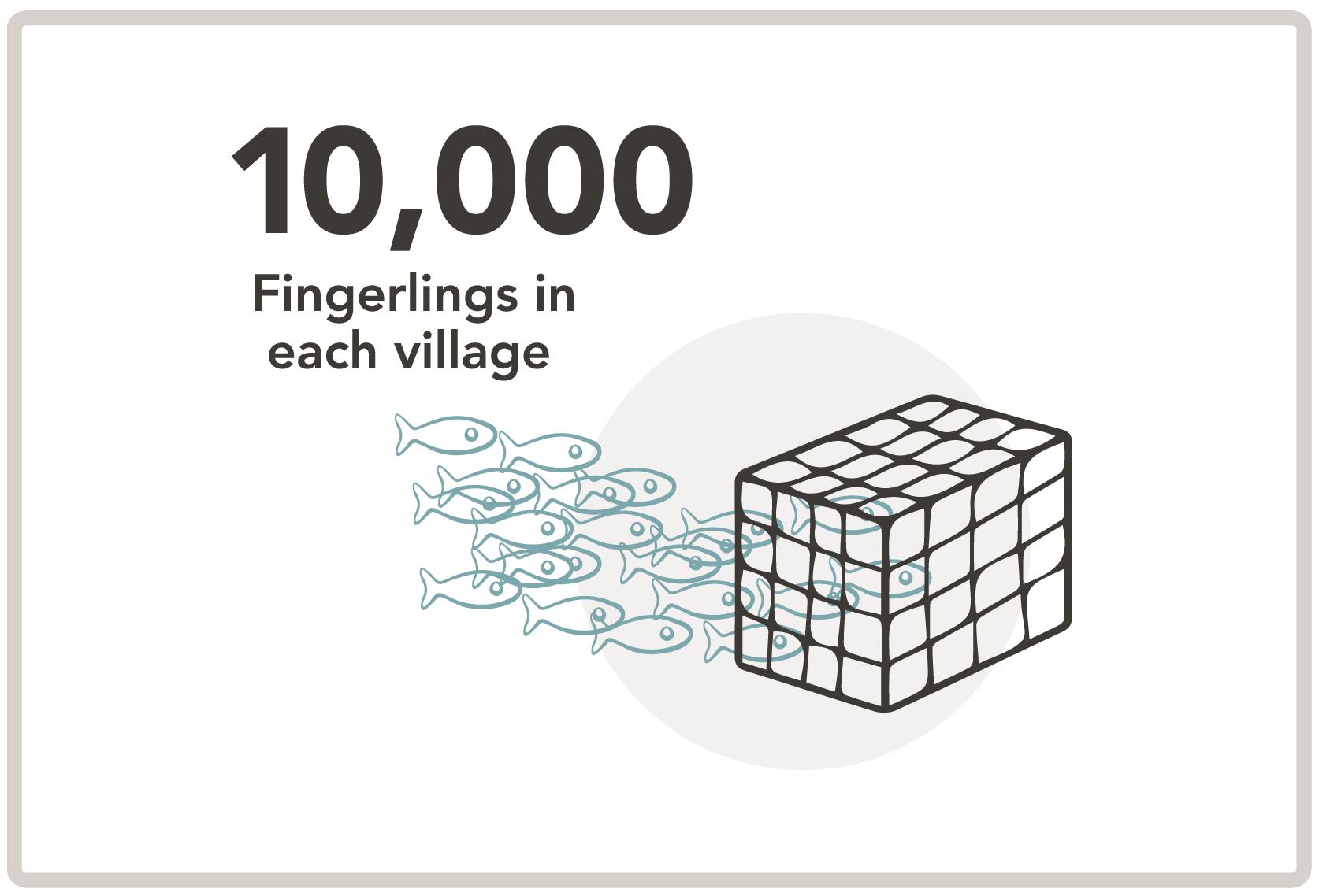 fingerlings.png