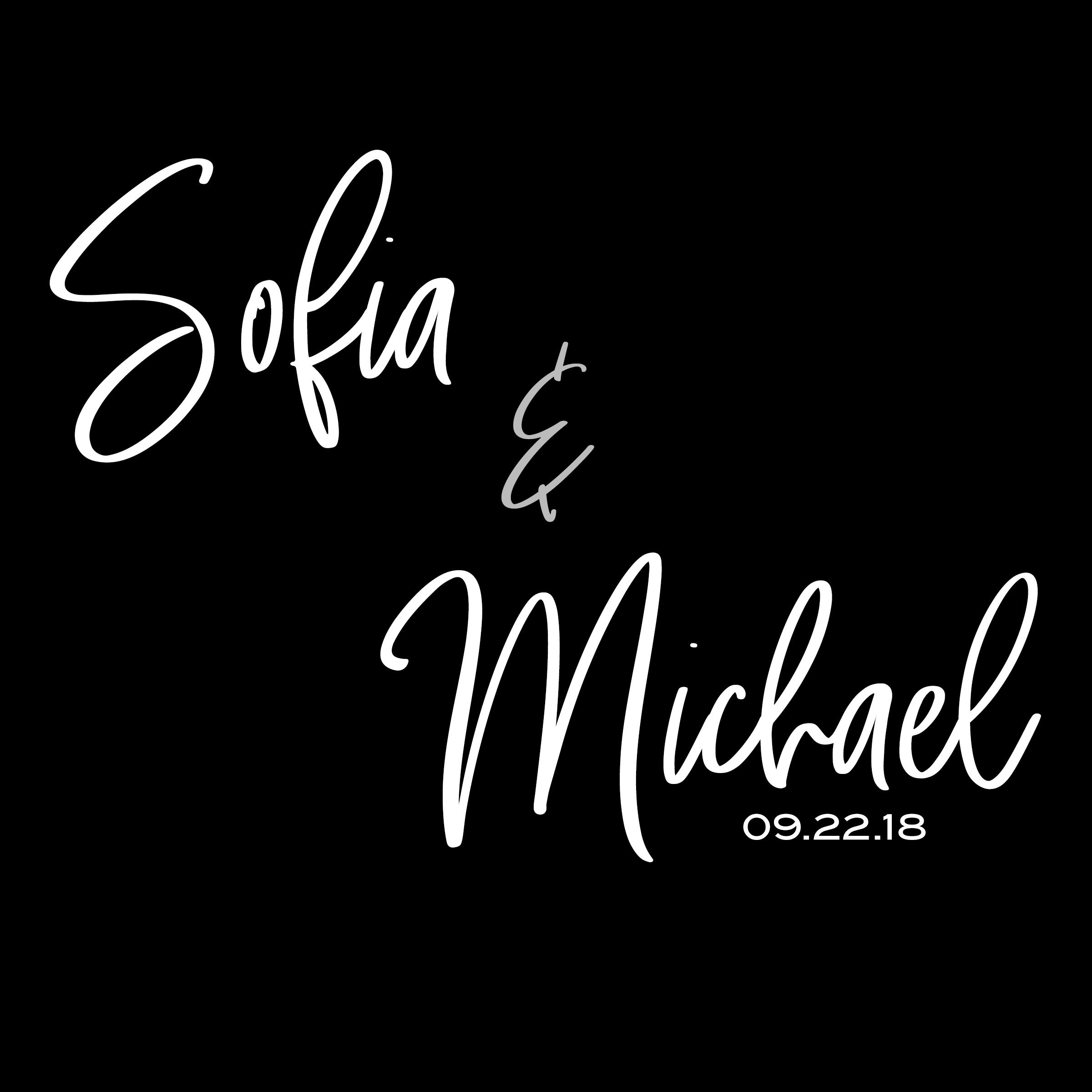 Sofia Michael 092218 Projector.jpg