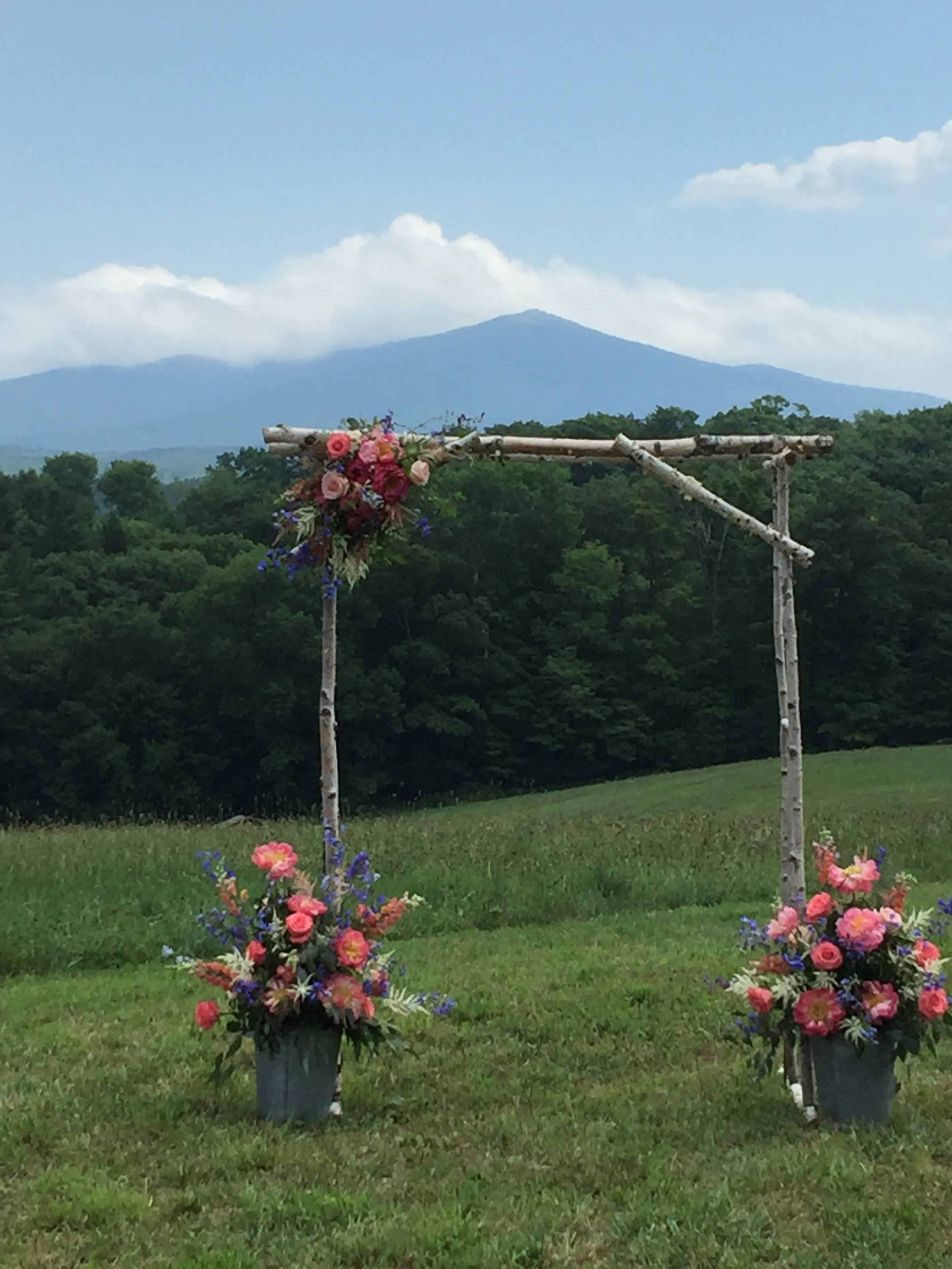 summer meadow wedding with mountain view