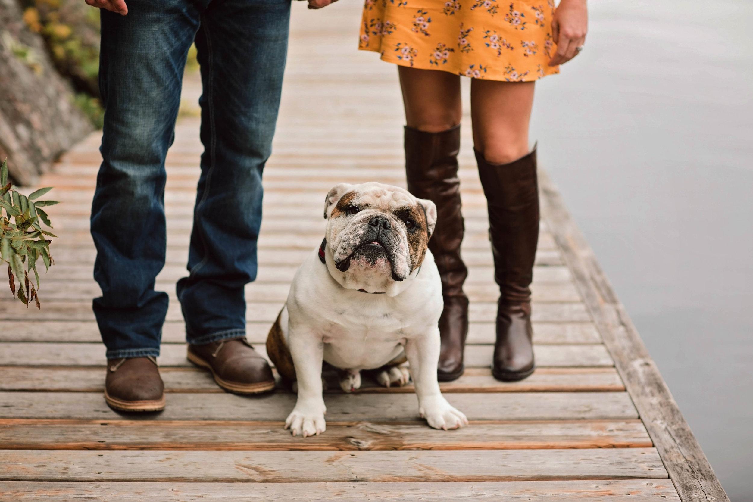 Morgan Bress Photography | Lindsay Wedding Photographer | Engagement Session with Dog | Kawartha Lakes Wedding Photographer | Ontario Wedding Photographer |  Burleigh Falls, Ontario | Waterfall Engagement