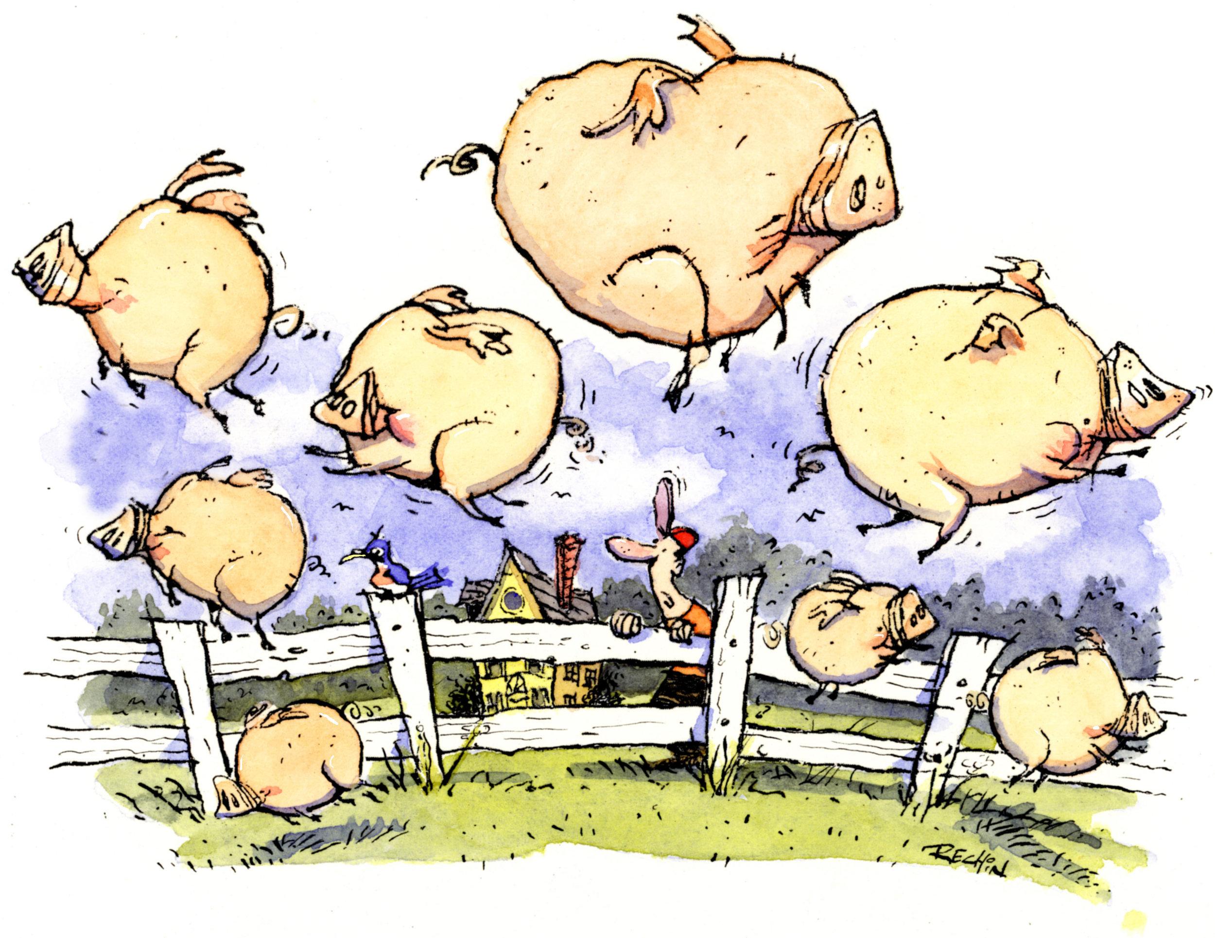 flying pigs final.jpg