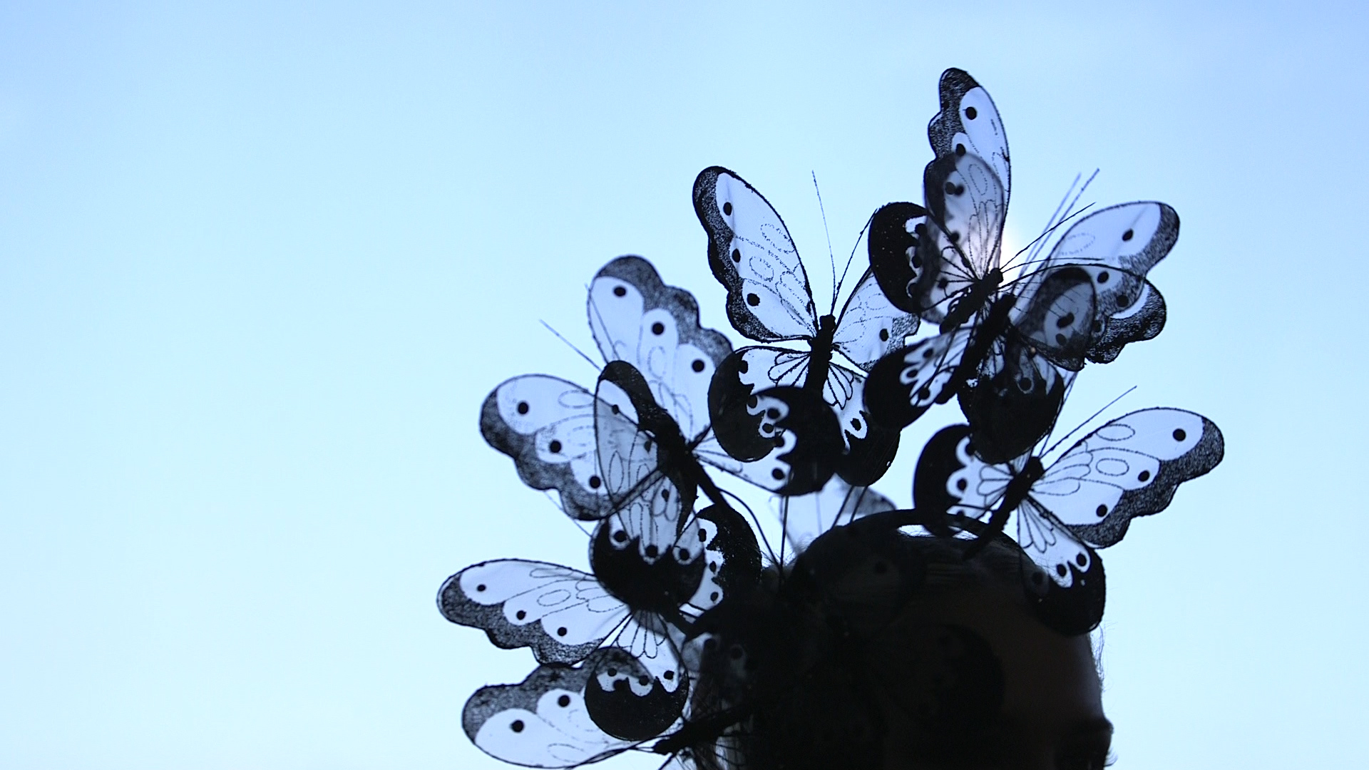 Arturo Rios Butterfly Hat 3.jpg
