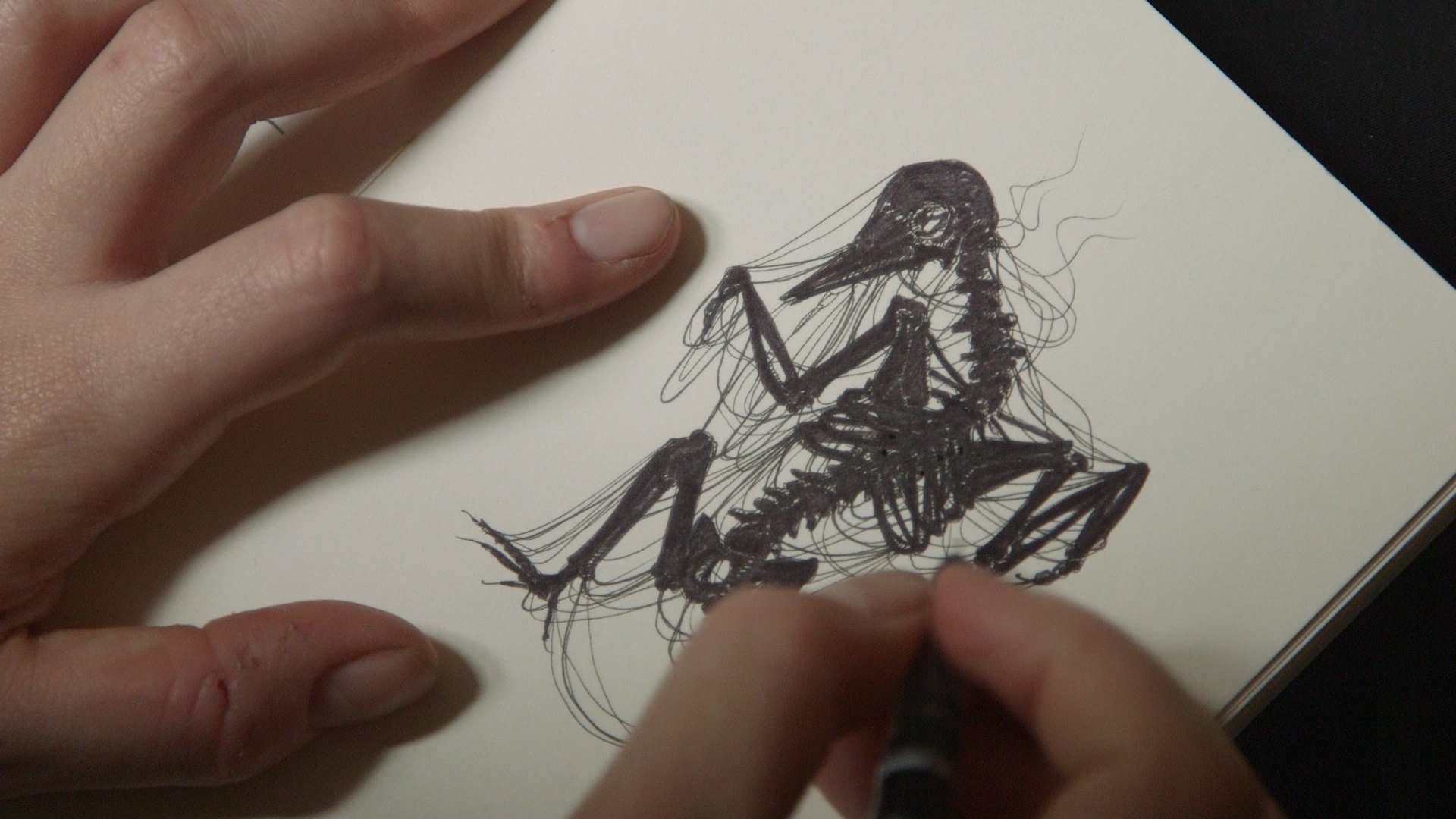 Death Skeleton Drawing.jpg