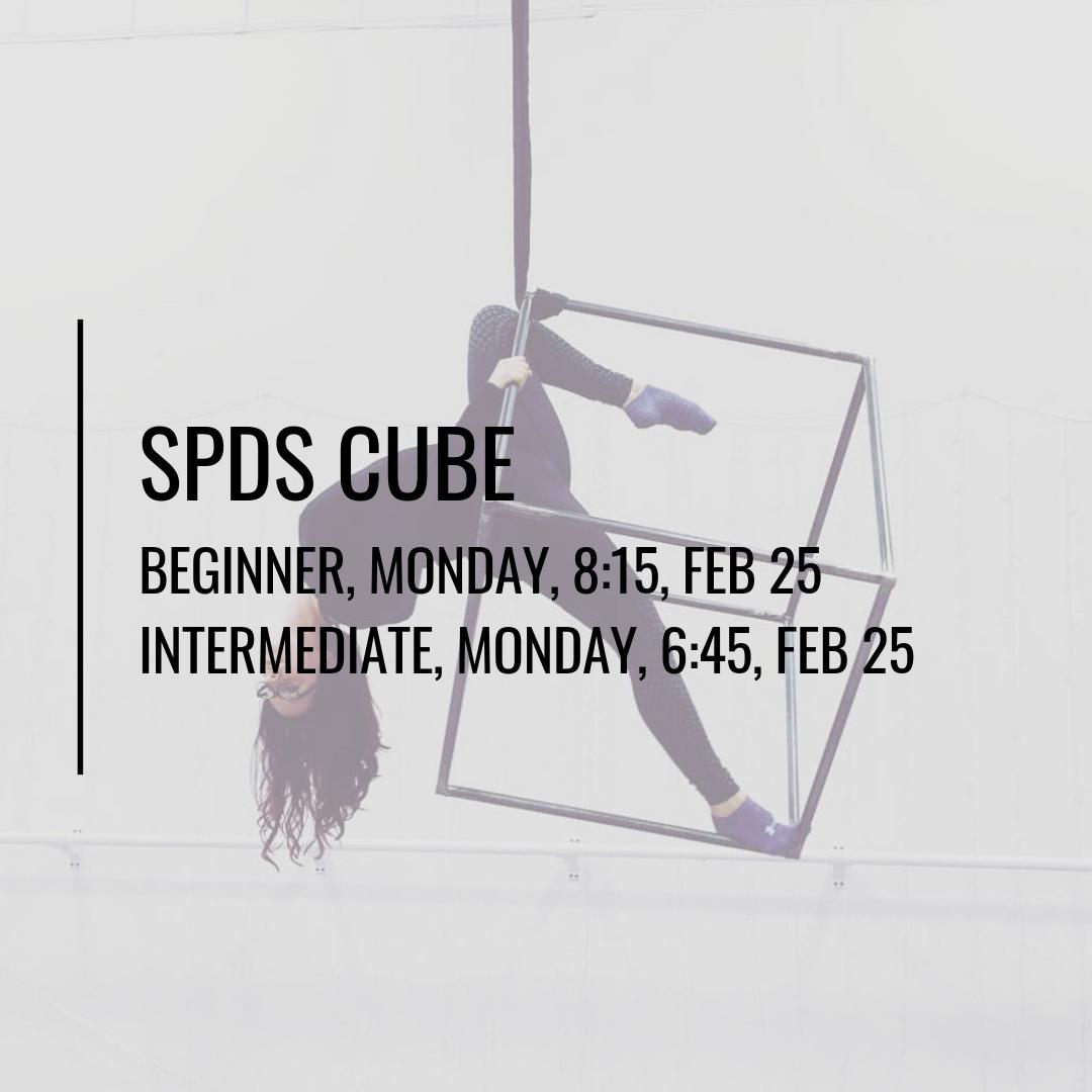 SPDS CUBE (2).jpg