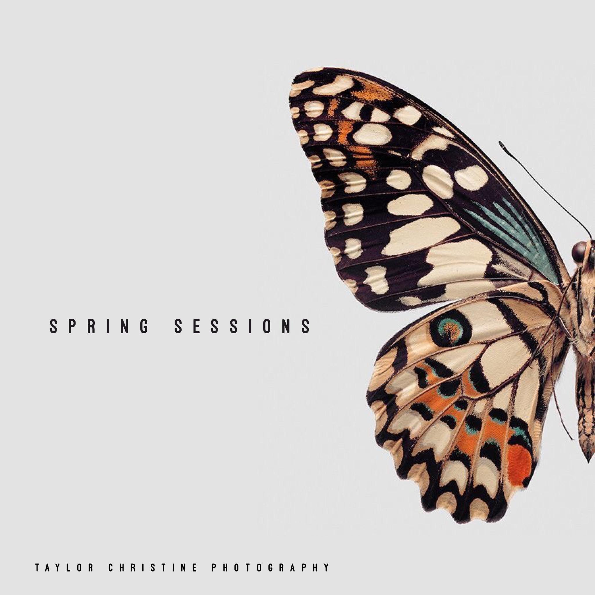 spring3 .jpg