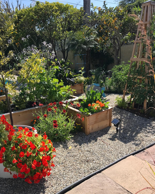 Spring Garden Abundance