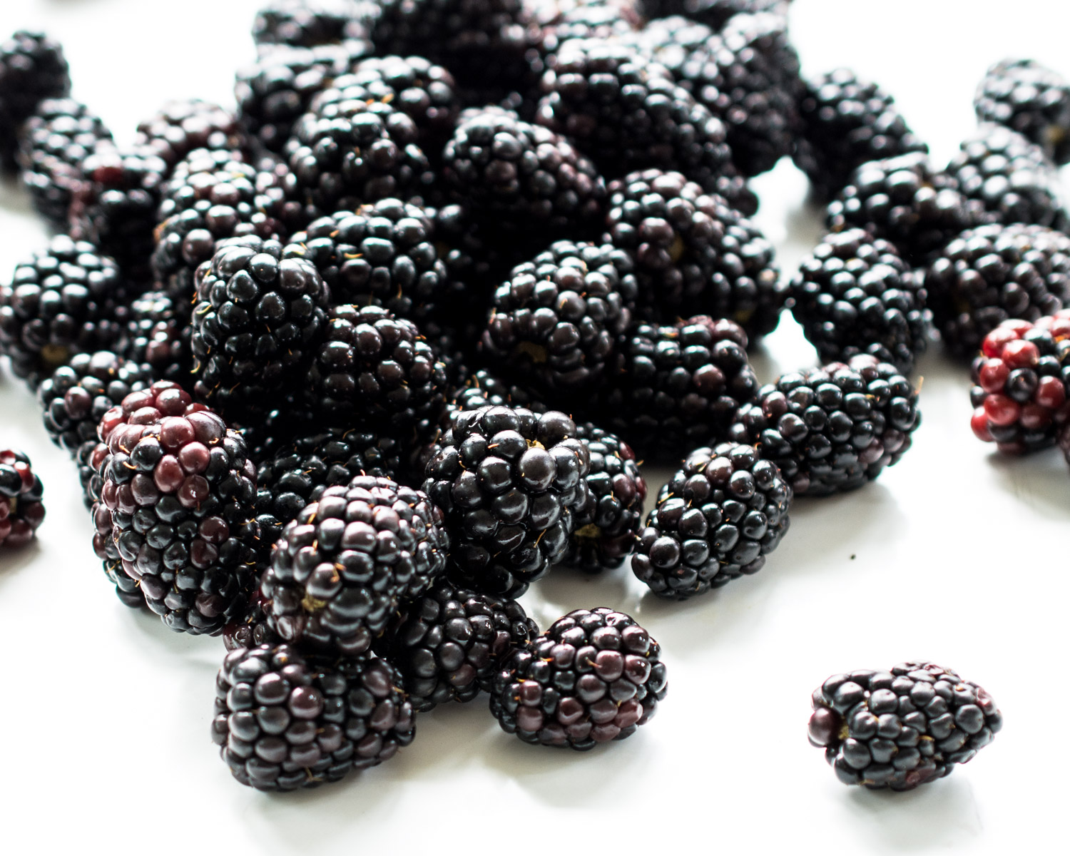 Fresh picked blackberries.