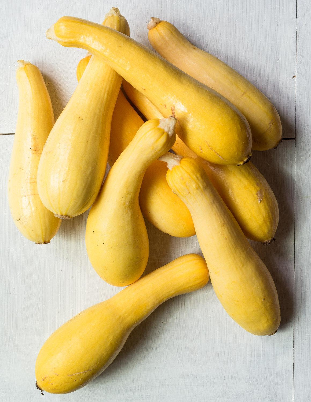 Garden fresh yellow crookneck squash.
