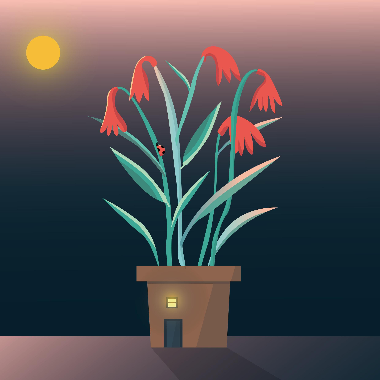flowerplant.jpg