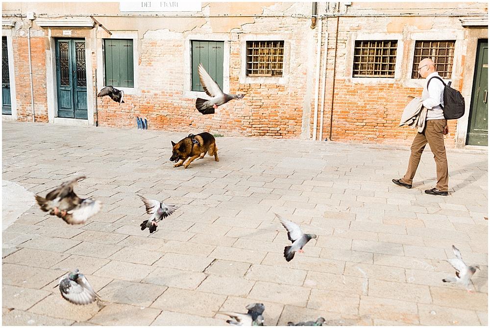 Venice-italy-wedding-photographer-stefano-degirmenci_0484.jpg
