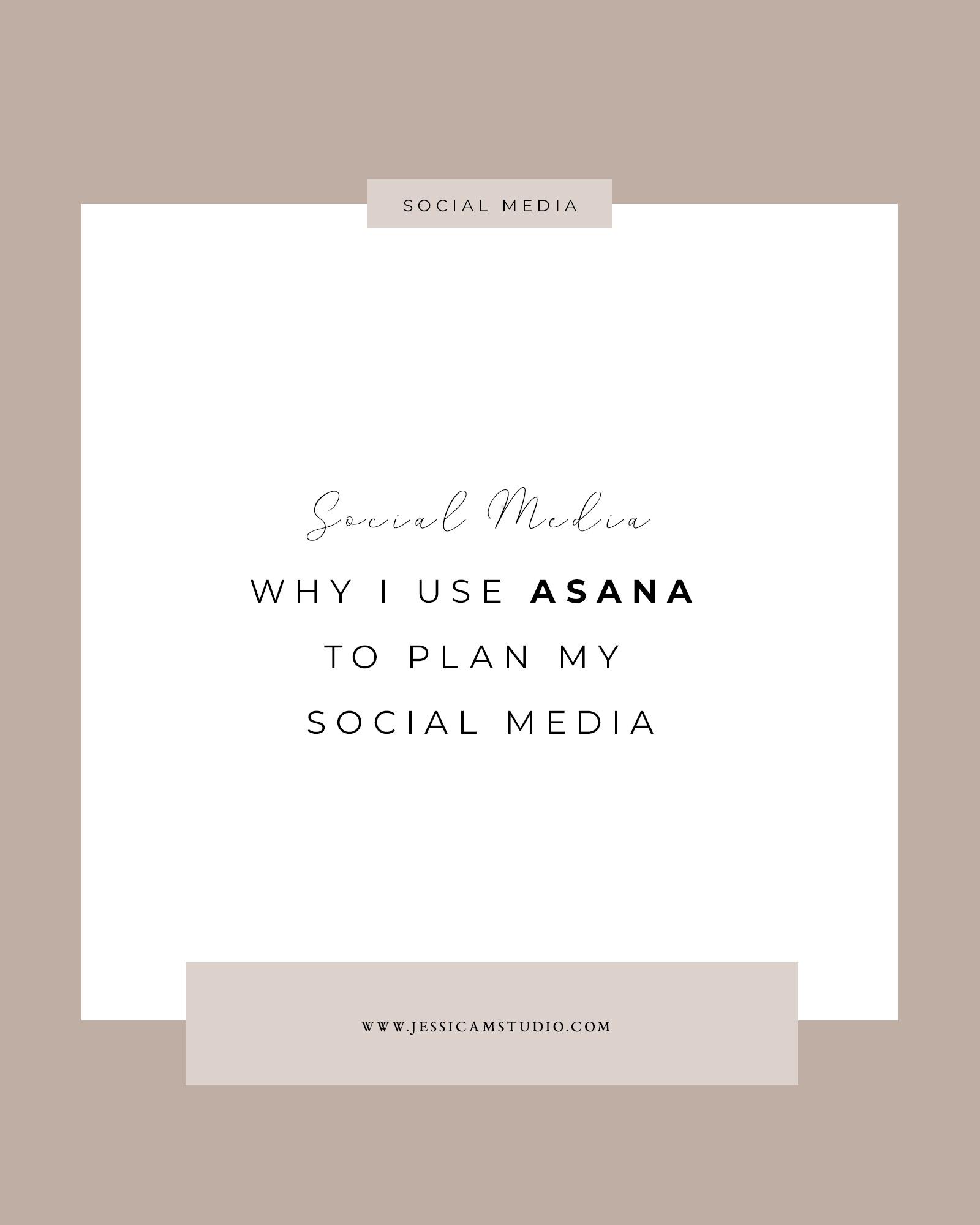 asana-plan-social-media