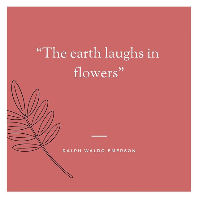 """The earth laughs in flowers."" ― Ralph Waldo Emerson . . . . . . #quote #laughinflowers #emerson #peony #peonylove #springflowers #luxflowers #sustainableflowers #flowers #florals #florallove #flowermagic #ethicalflowers #loveflowers #flowerlover #alltheprettythings #freshcutflowers #ihavethisthingwithflowers #flowermagic #flowers #flowersofinstagram #floral #floralimports#floraldesigner #yyj #yyjbusiness #monterossoimports #blooms #monterossoflowers"
