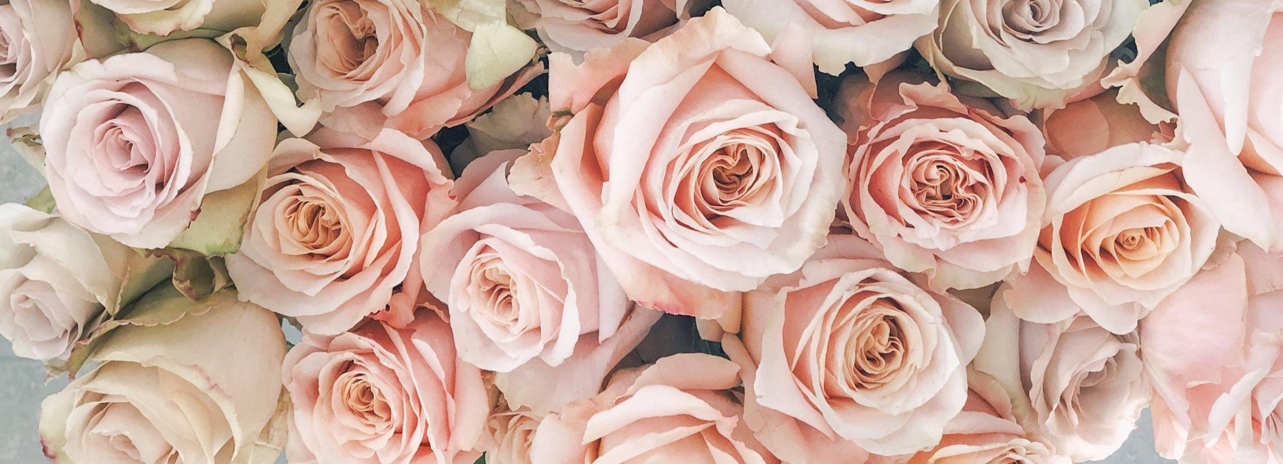 Wildflowers+Fairhope%2C+Valentine%27s+Day+2019