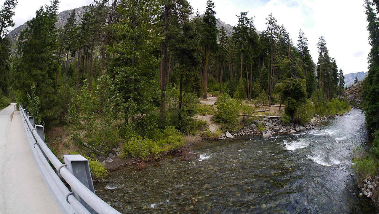 An image of Bridge Creek Campground, featuring the bridge, the creek, AND the campground! Photo courtesy of  Thayne Tuason.