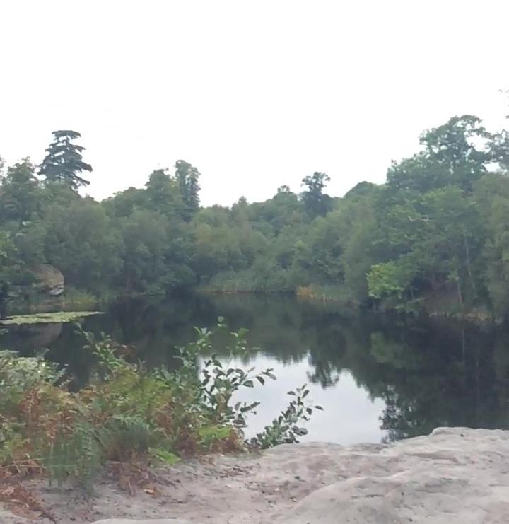 lake wood uckfield