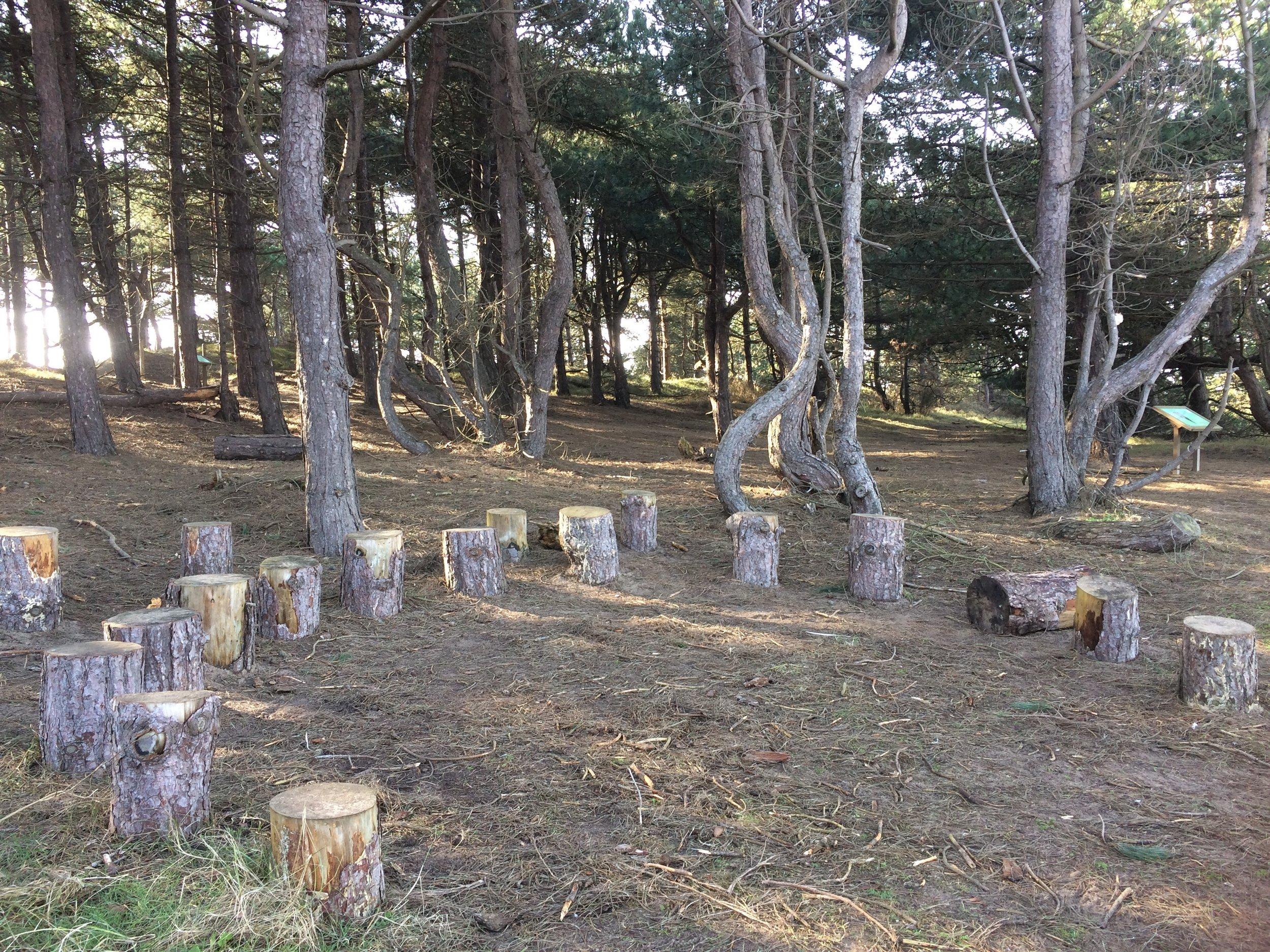 Circle of Wood.JPG