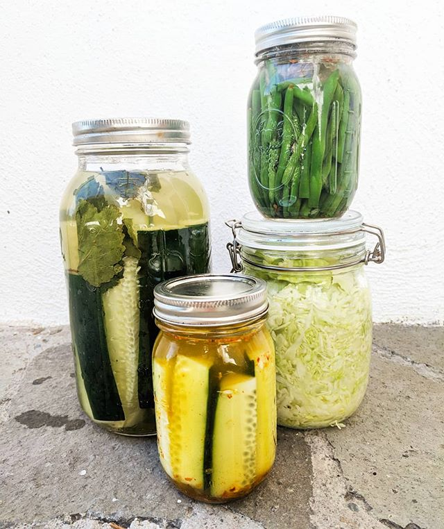 "More fermenting fun! Today we're making traditional sauerkraut, chili garlic green bean ferments, tumeric pickles, and lacto-fermented cucumbers with a secret ingredient: adding a grape leave (""borrowed"" from a nearby vineyard) adds tannins to the brine resulting in extra crunchiness."