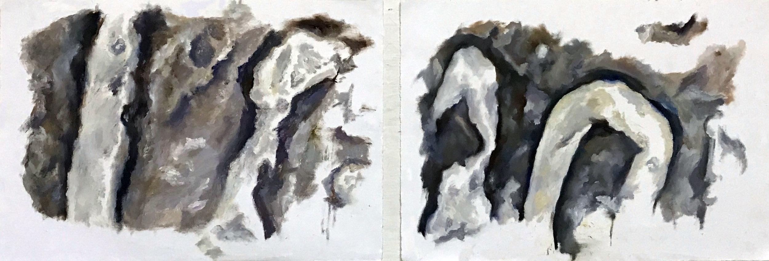 Oil on paper  11 x 17 inches each  2017