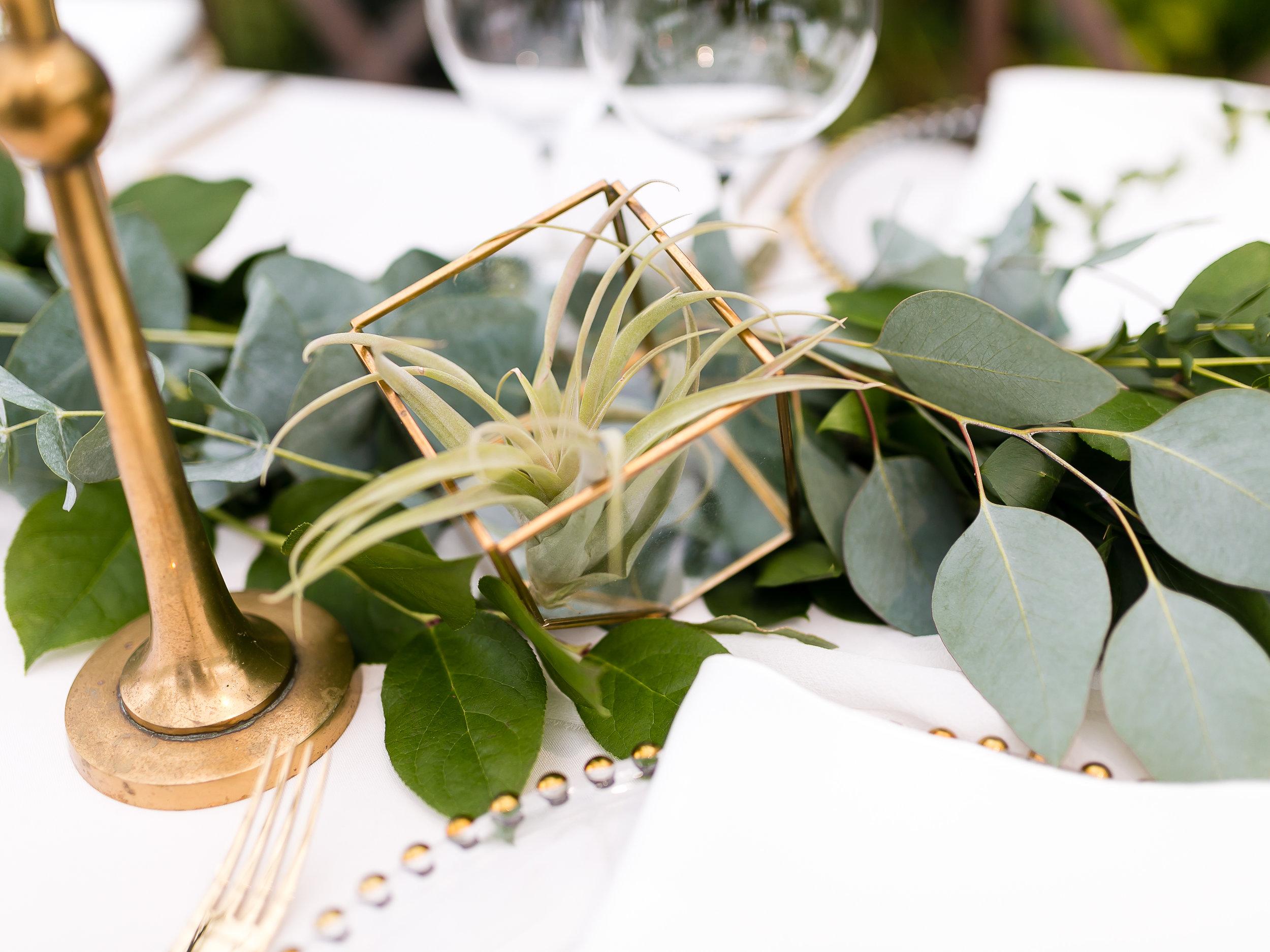 Aquatopia-Wedding-Ottawa-Wedding-Photographer-Stephanie-Mason-Photography-168.jpg