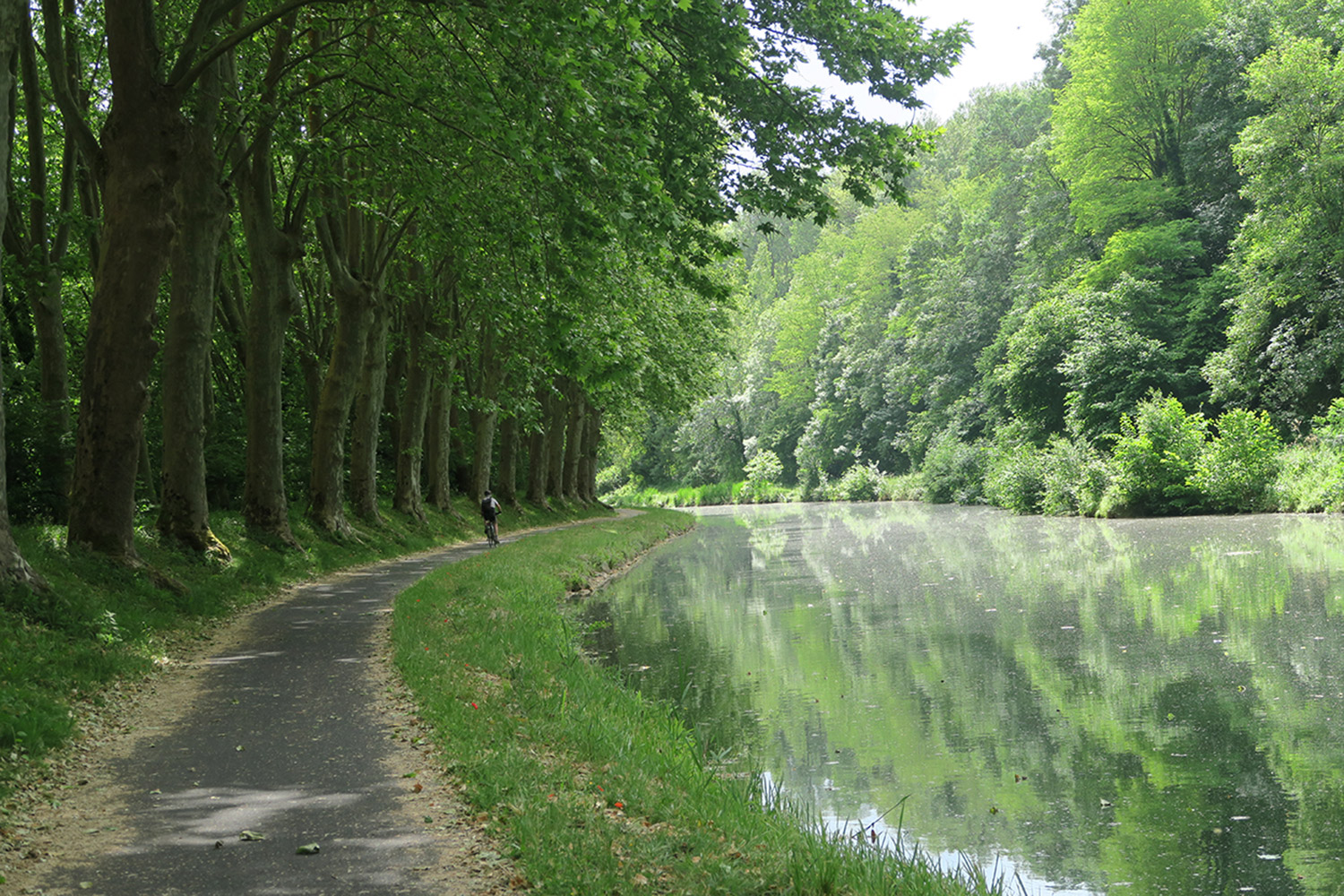 The Canal de la Garonne...it's a lot like this most of the way