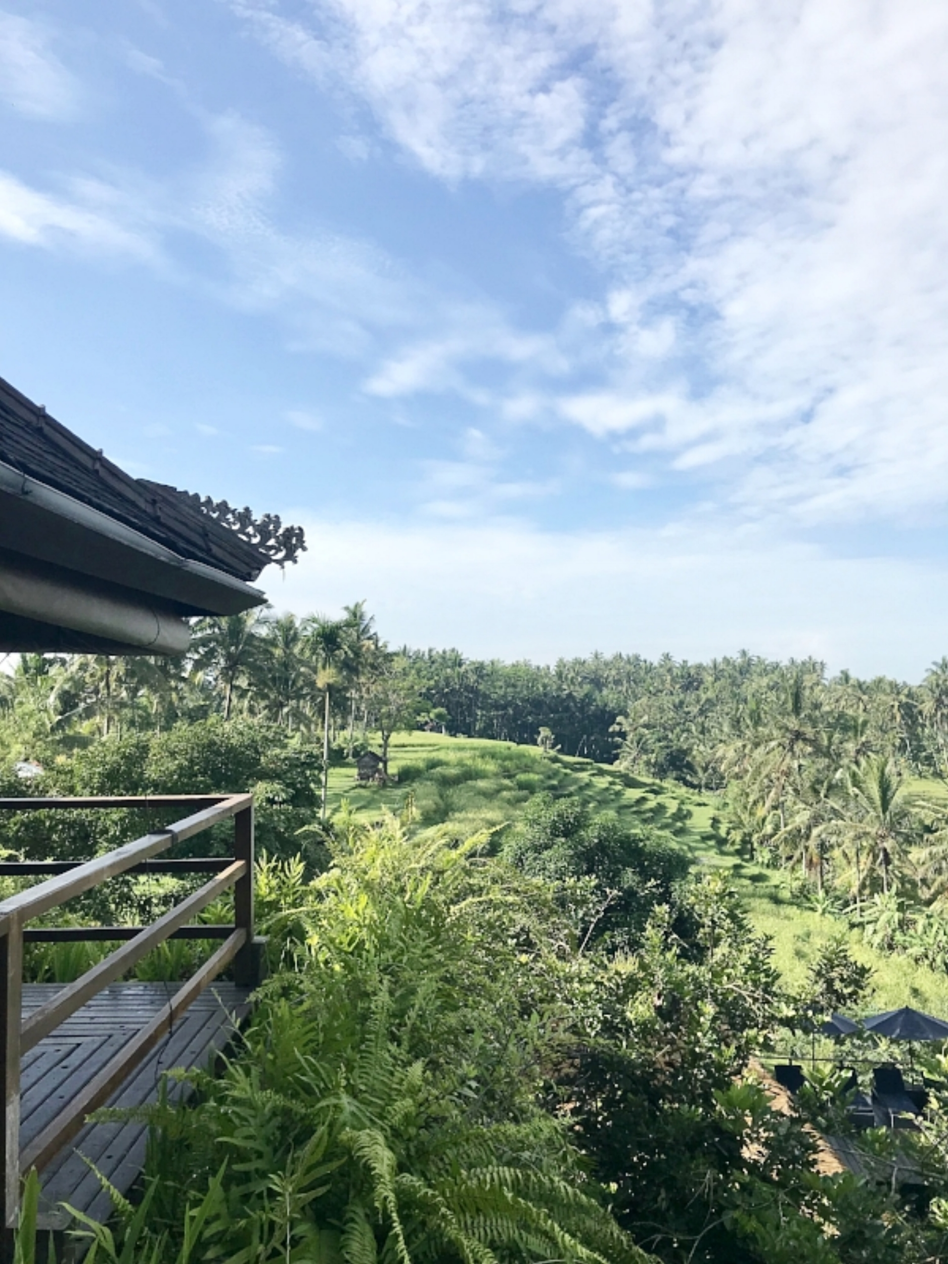 Views from Soulshine Hotel and Yoga Retreat Bali
