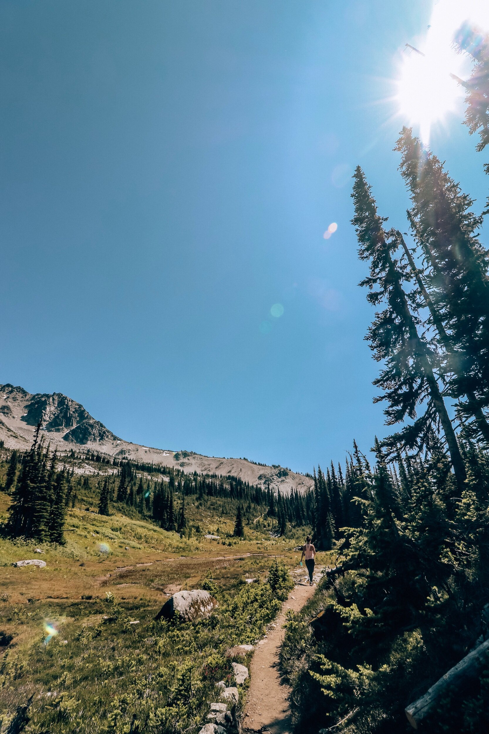 Overlord Trail Hike on Blackcomb Mountain