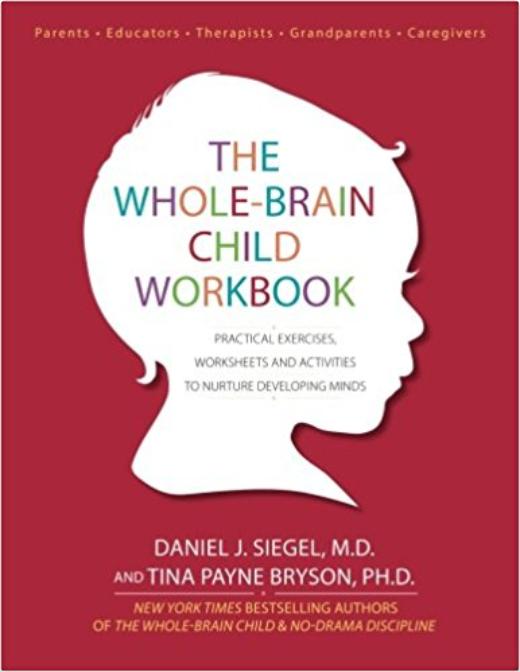 https://www.amazon.com/Whole-Brain-Child-Workbook-Worksheets-Activities/dp/1936128748/ref=sr_1_1_sspa?crid=315KG2XY3EVJV&keywords=the+whole+brain+child&qid=1566419909&s=books&sprefix=the+whole+bra%2Cstripbooks%2C160&sr=1-1-spons&psc=1&spLa=ZW5jcnlwdGVkUXVhbGlmaWVyPUExSTBBQUk5RUg0Q1g1JmVuY3J5cHRlZElkPUEwNjQ4MDE2MzU2UzQ3UDVLT0k4NSZlbmNyeXB0ZWRBZElkPUEwNjcxMDUzMkVMVFZEN1RHWTZFTCZ3aWRnZXROYW1lPXNwX2F0ZiZhY3Rpb249Y2xpY2tSZWRpcmVjdCZkb05vdExvZ0NsaWNrPXRydWU=