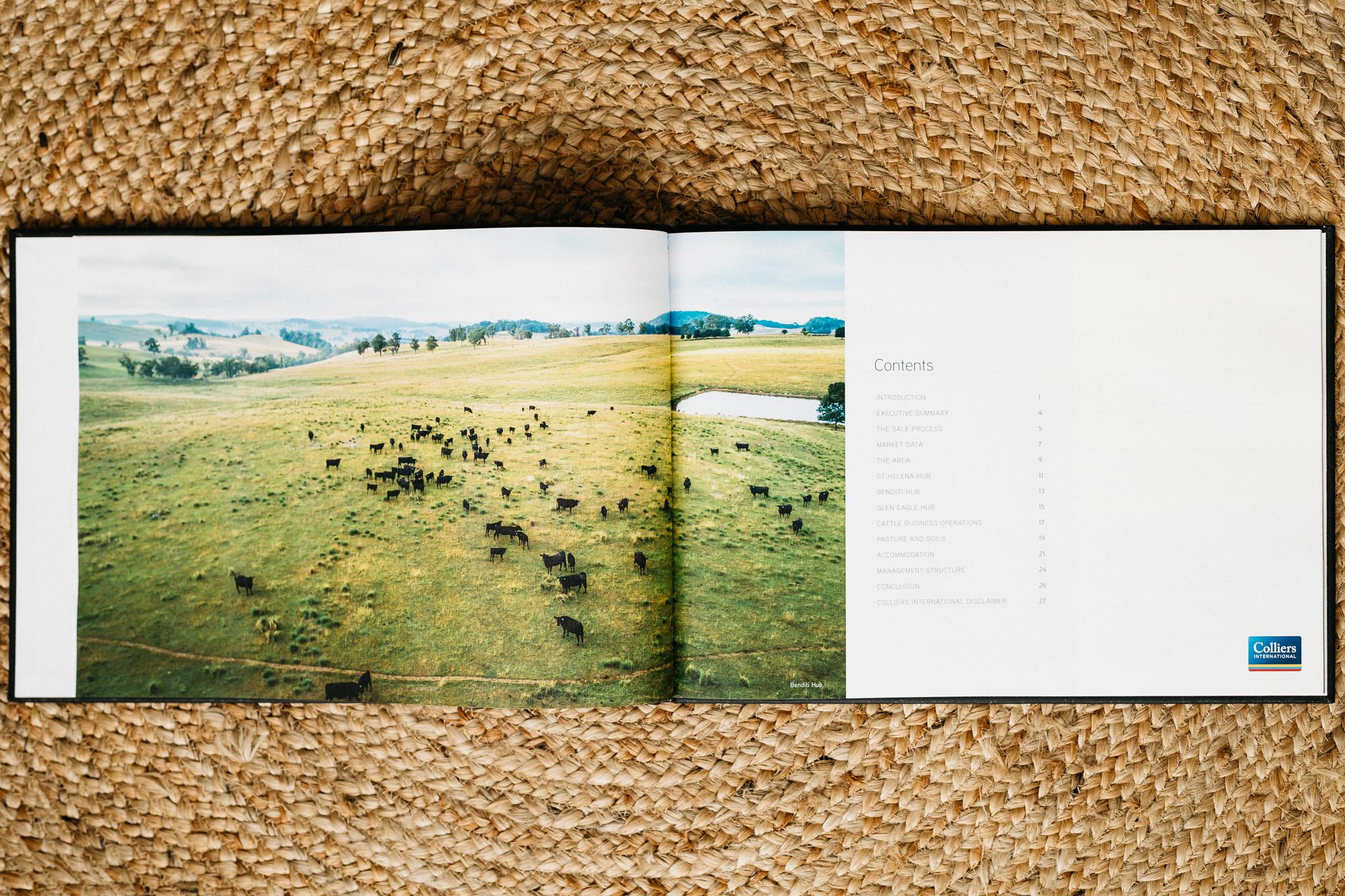 book-flatlay-010.jpg