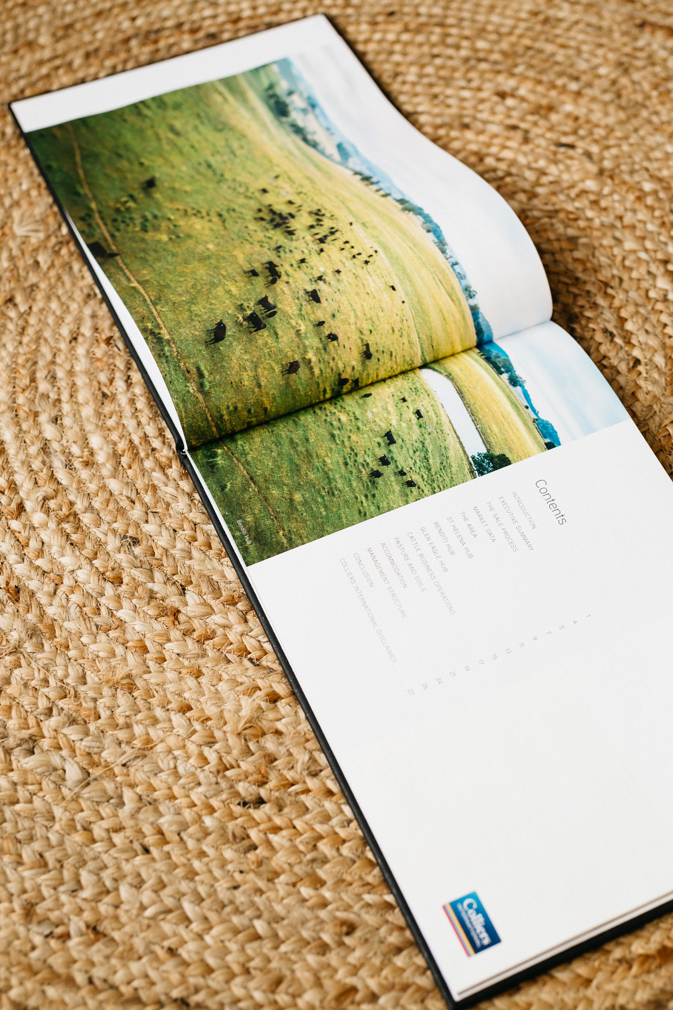 book-flatlay-011.jpg